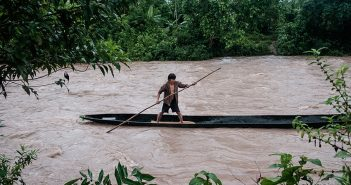 Proyectos Amazonía