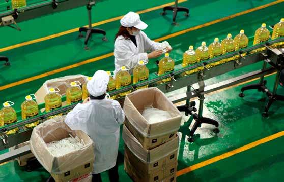 Producción de alimentos envasados